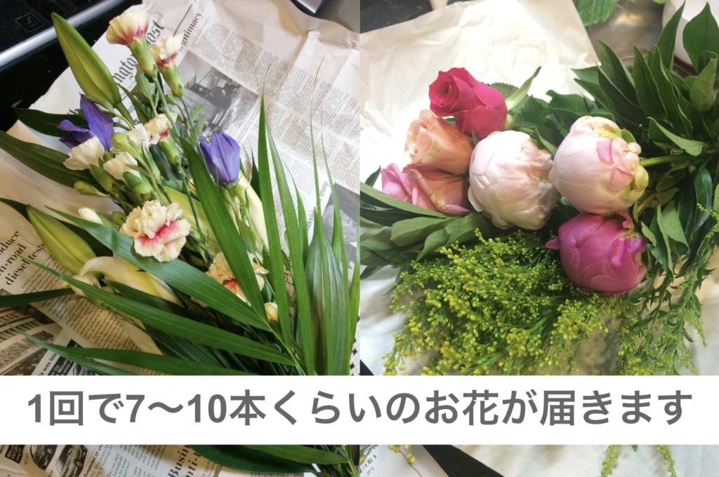 お花の定期配達PureFlower花の量