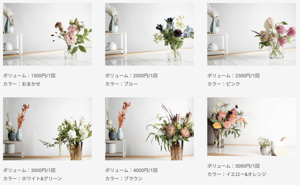 お花の定期便Hitohanaのお花のサイズボリュームと実際の配達写真