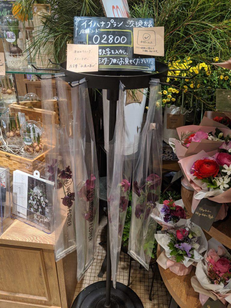 お花の定額サブスク「ハナノヒ」のお花の写真