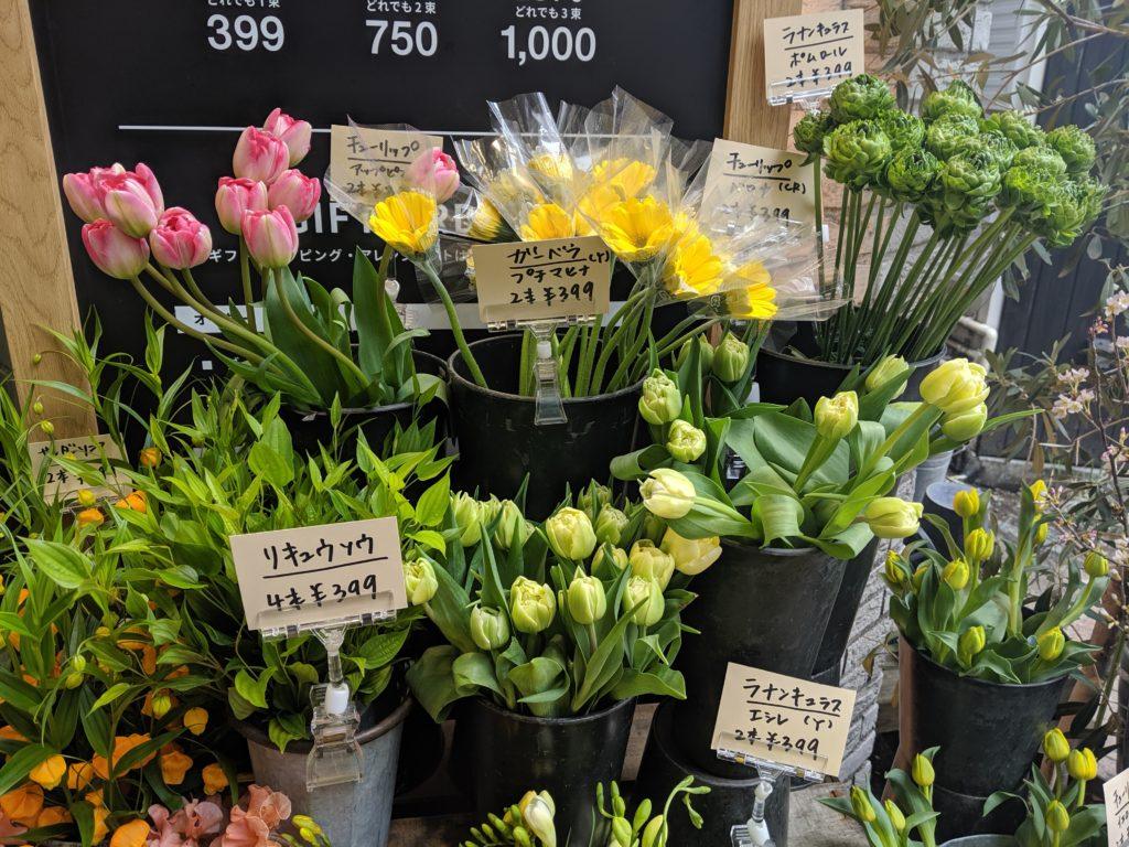 自由が丘WONDER FLOWER ハナノヒお花の種類