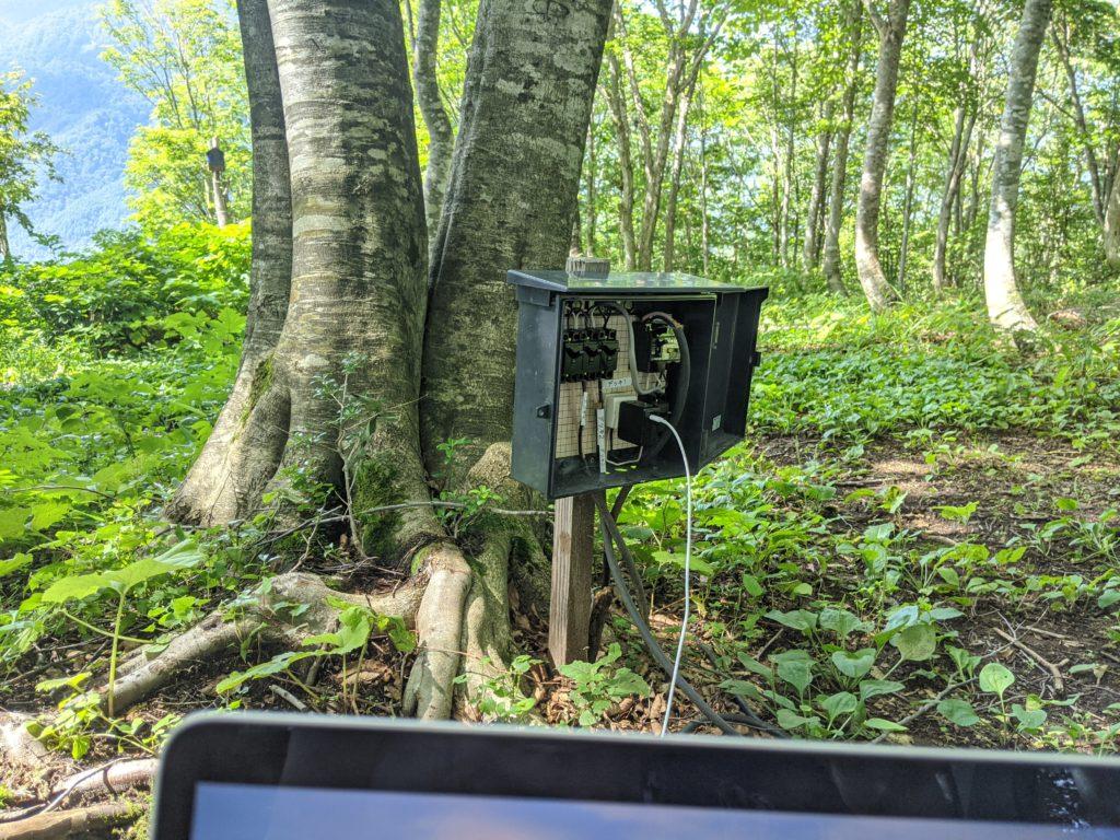 森のオフィス(岩岳マウンテンハーバーでワーケーション)